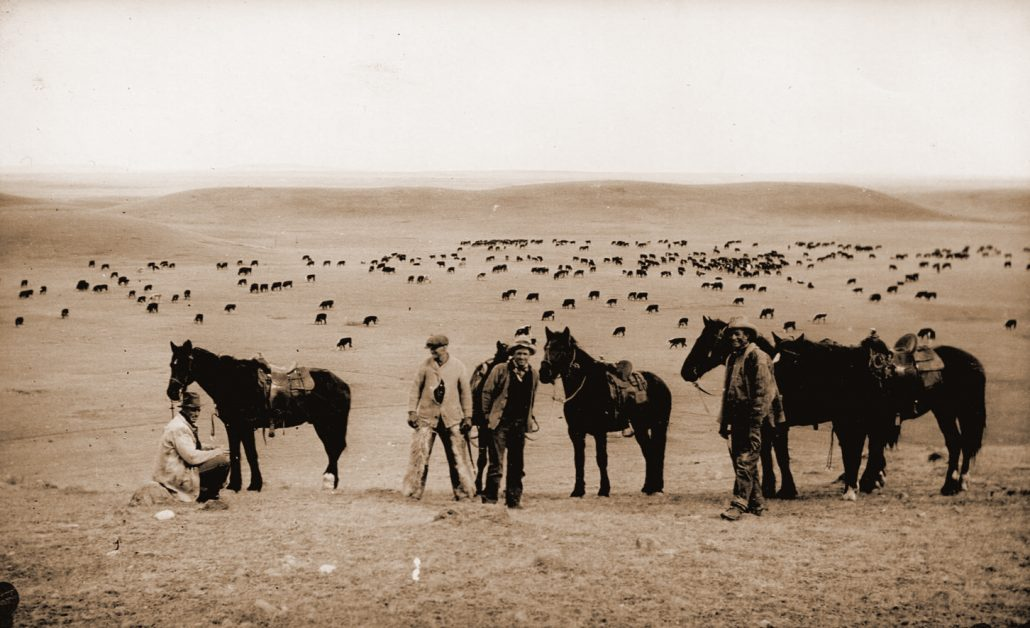 Early Ranchers